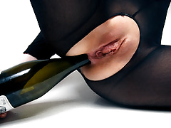 Champagne - Areana Fox