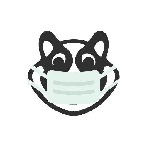 xHamster Premium Coronavirus Update